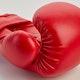 Blitz Kids Training Boxing Gloves - Detail 2