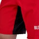 Falcon MMA Shorts - Detail 3