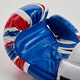 Blitz Kids Country Boxing Gloves - Detail 2