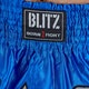 Kids Muay Thai Fight Shorts - Detail 1