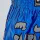 Kids Muay Thai Fight Shorts - Detail 2