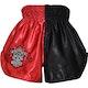 Kids Muay Thai Shorts in Red / Black - Rear