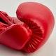 Blitz Omega Boxing Gloves - Detail 1
