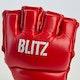 Blitz Raptor MMA Gloves - Detail 1