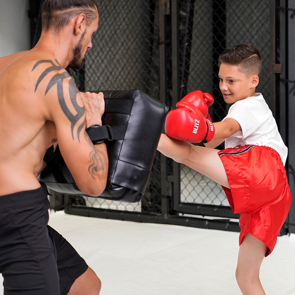 Blitz Melon Striking Ball Strike Shield Martial Arts MMA Boxing