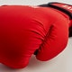 Blitz Odyssey Washable Boxing Gloves - Detail 2