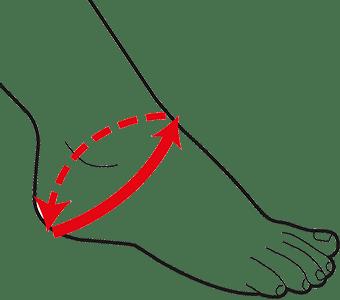Blitz Ankle Size Chart