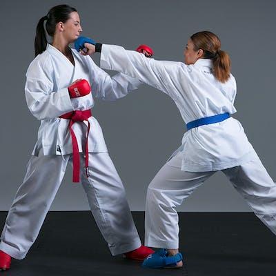 Karate Wholesale Enquiries